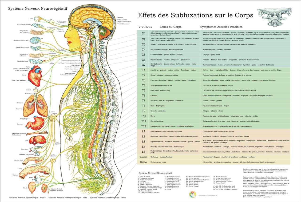 Subluxation poster
