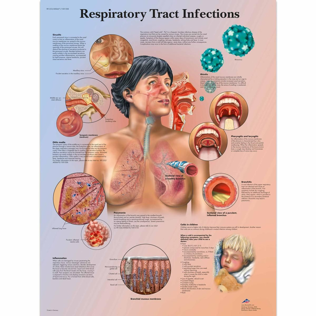 RESPIRATORY TRACT POSTER