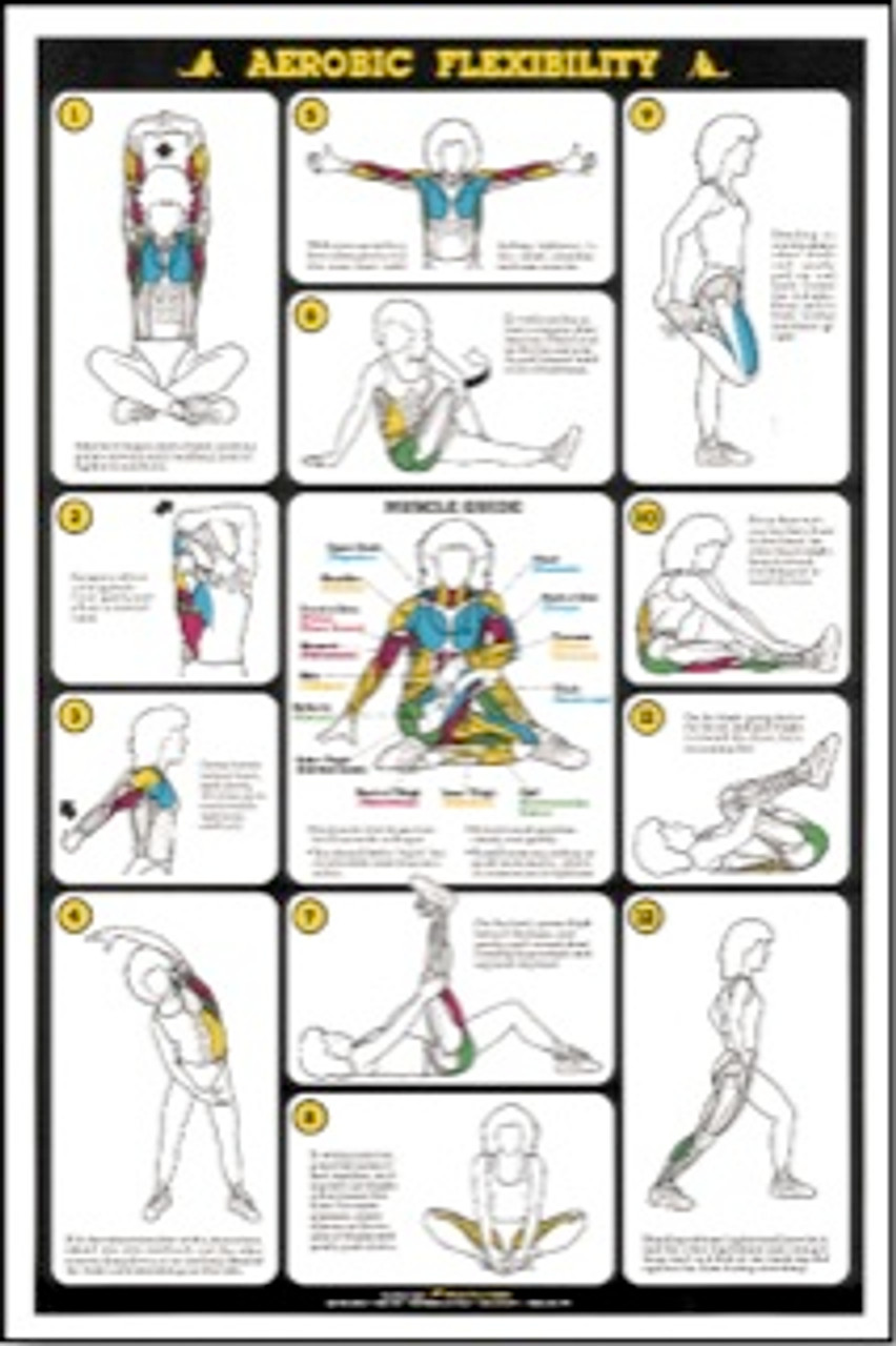 Weight Training Flexibility Poster