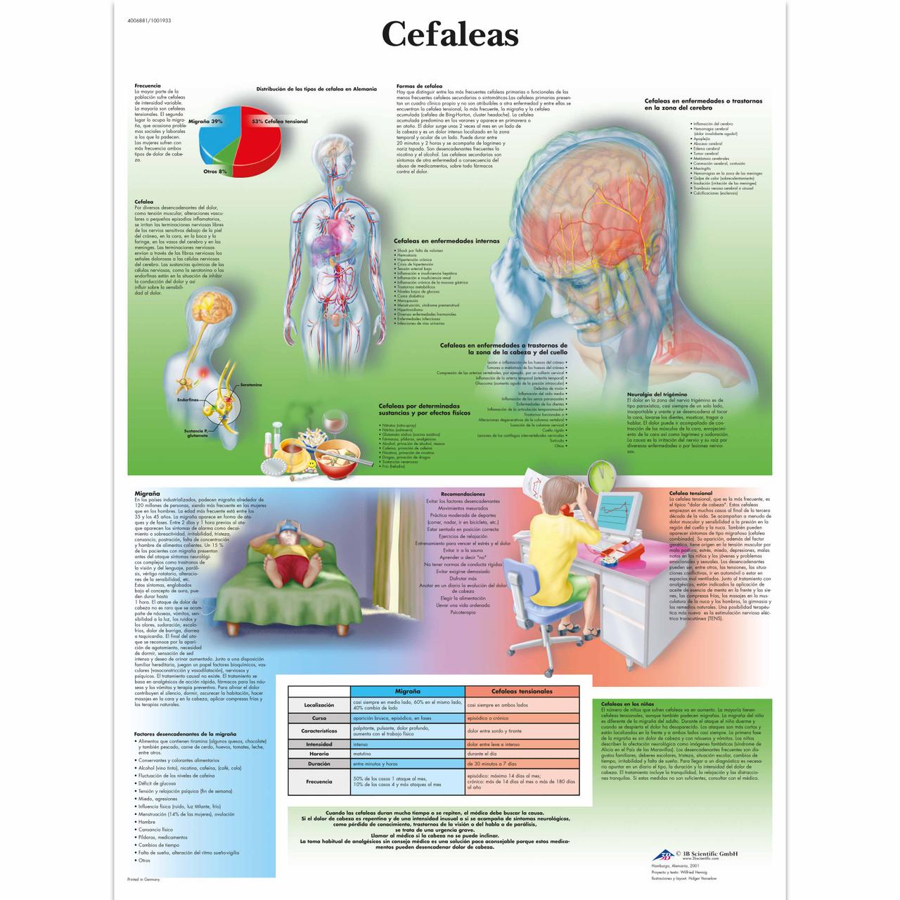 Cefaleas Chart