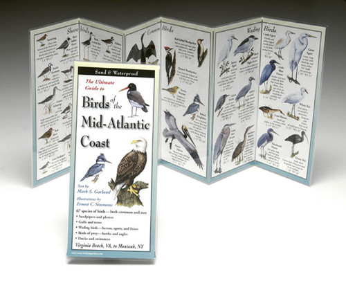 Birds of the Mid-Atlantic Coast