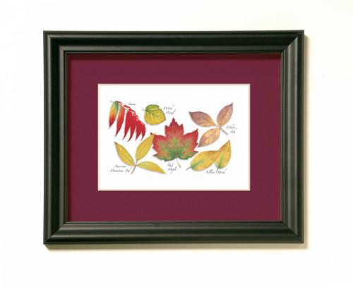 Red Maple Tree Assortment Print