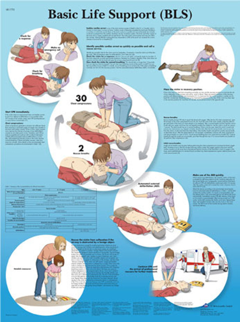 Basic Life Support Chart