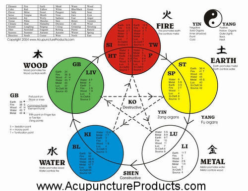 "The Five Element Acupuncture Poster 8.5"" x 11"" Front Side"