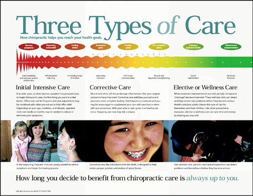 Three Types of Care Chiropractic Chart