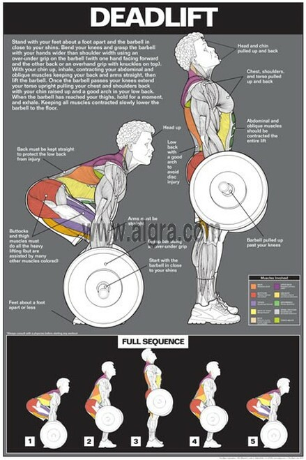 Exercise Educational Posters | ClinicalCharts com