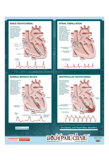 Heart Rate Poster
