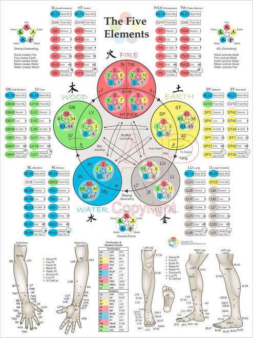 Acupuncture Educational Posters at ClinicalCharts com