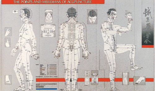 Acupuncture Points and Meridians Chart