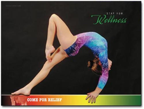 Balance Beam Chiropractic Poster