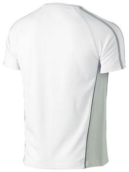 White/Grey Back