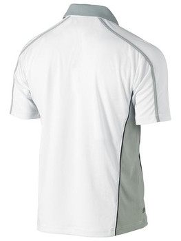 White/Grey Back