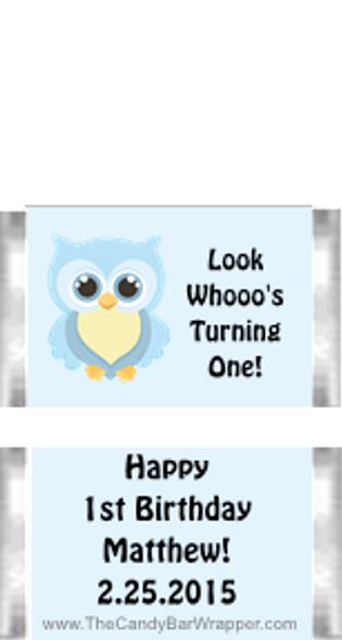 Owl First Birthday Boy Mini Candy Bars