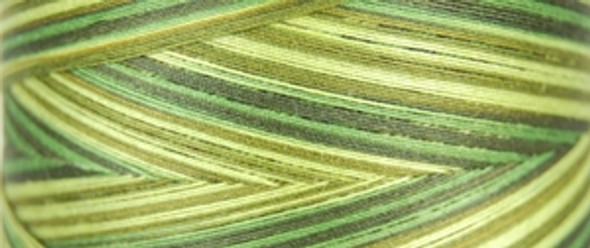 Signature Cotton Variegated - F152 Olive Hues - 3000 yd