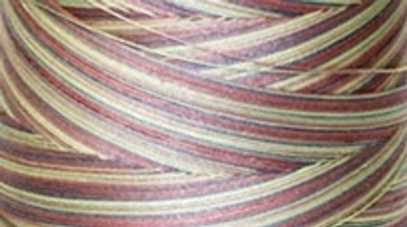 Signature Cotton Variegated - M06 Victorian - 3000 yd