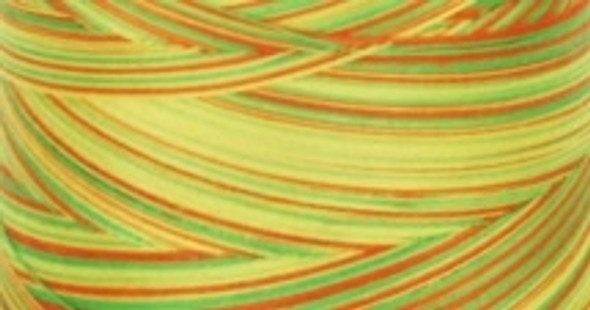 Signature Cotton Variegated - M10 Citrus - 3000 yd