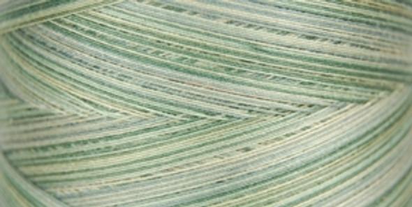 Signature Cotton Variegated - M86 Greyish Greens