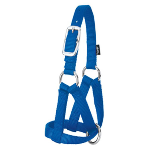 Weaver Leather -  Goat Halter, Blue, 3 4 inch Small