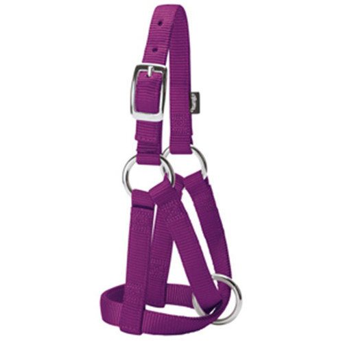 Weaver Leather -  Goat Halter, Purple Jazz, 3 4 inch Small