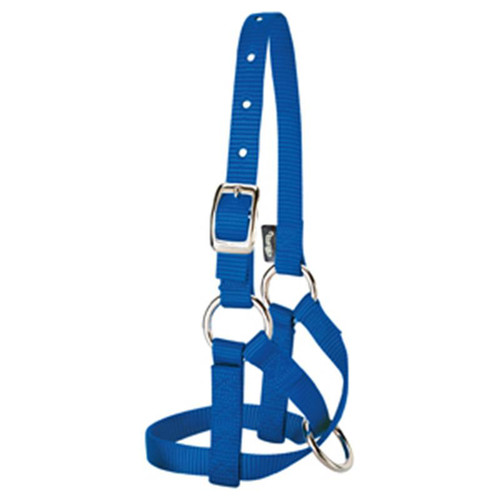 Weaver Leather -  Alpaca Halter, Blue, 5 8 inch Large