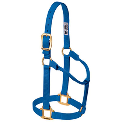 Weaver Leather -  Original Non-Adjustable Halter, Blue, 1 inch Large Horse or 2-Year-Old Draft