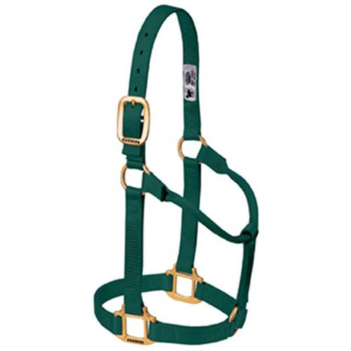 Weaver Leather -  Original Non-Adjustable Halter, Hunter Green, 1 inch Large Horse or 2-Year-Old Draft