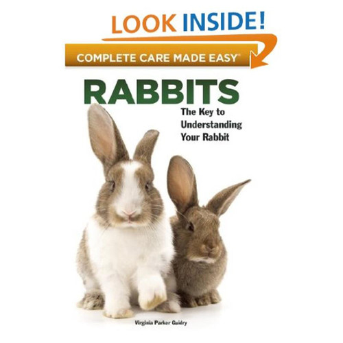 Global Books - Complete Care Made Easy Rabbits