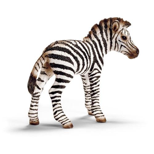 Schleich- Zebra Foal