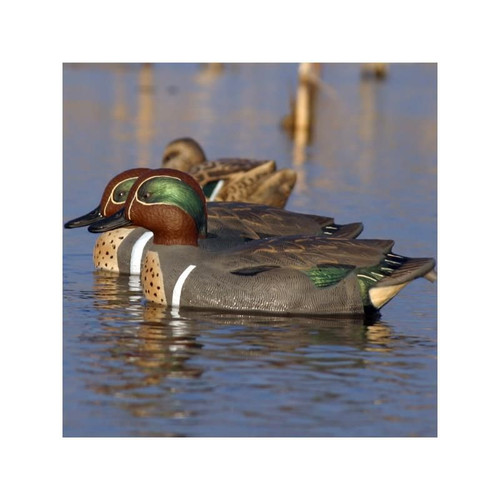 Flambeau- Stormfront Classic Green Winged Teal -6 Pack