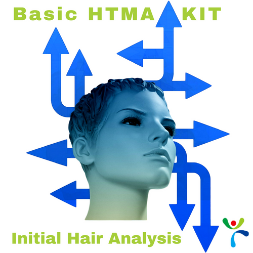 Basic Hair Tissue Mineral Analysis - Initial Test at Wellness Shopping Online