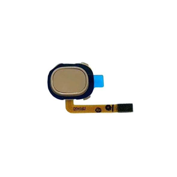 Samsung Galaxy A20 Fingerprint Flex Cable Gold from Parts4repair.com