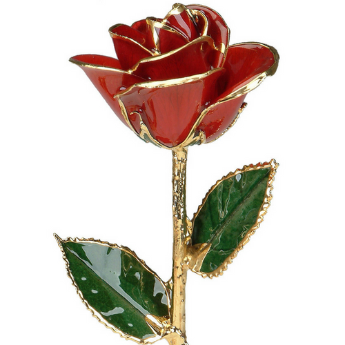 Red 24k Gold Rose