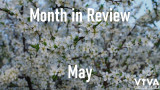 May 2020 - Month In Review