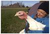 We raise chickens using a true pastured model.