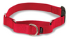 "Petsafe Martingale Dog Collar 3/4"" Small 9-11"" Red"