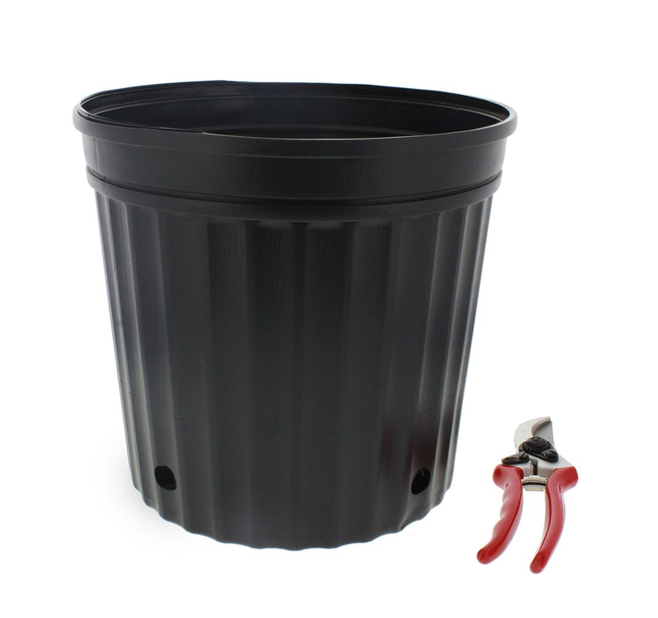 These blow-molded nursery containers are ideal for small shrubs, perennials and tropicals at an amazingly low price.