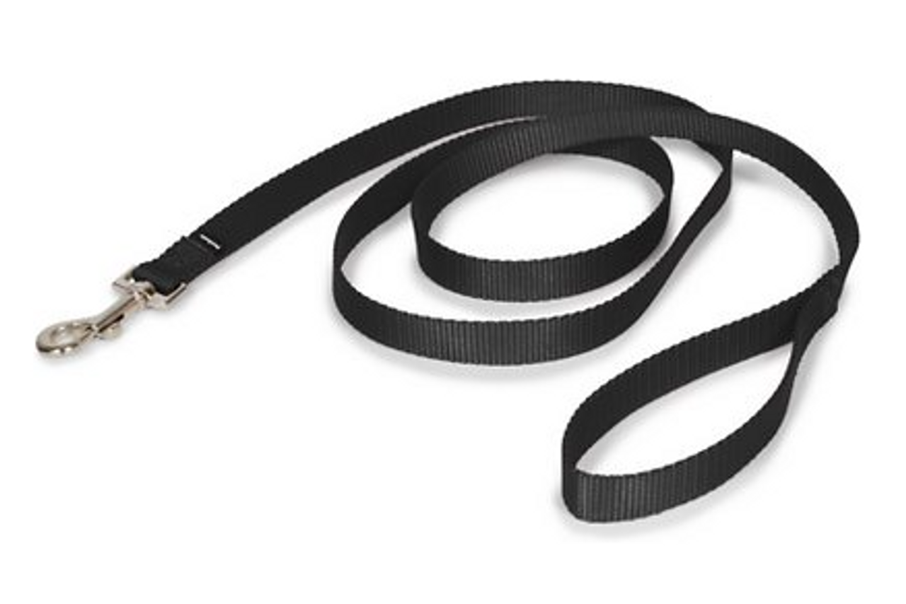"Pet Safe Dog Leash 3/8""W X 6'L.Black"