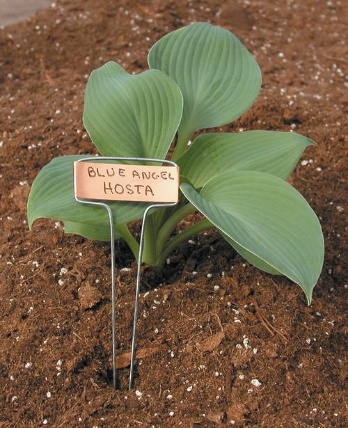 """Luster Leaf 10"""" Copper Plant Labels 10pk"""