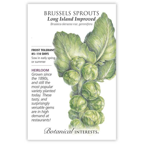Botanical Interests Brussels Sprouts Long Island Improved