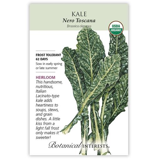 Botanical Interests Kale Italian Nero Toscana Organic