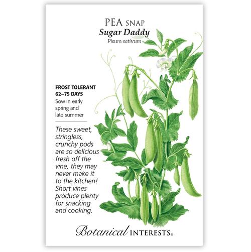 Botanical Interests Pea Snap Sugar Daddy