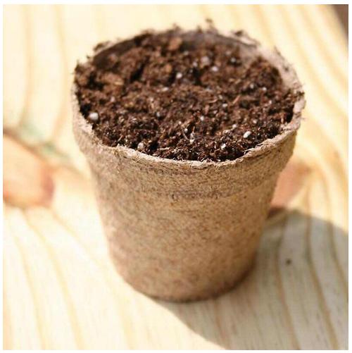 "Jiffy Round Peat Pots 4"" 6 Pack"