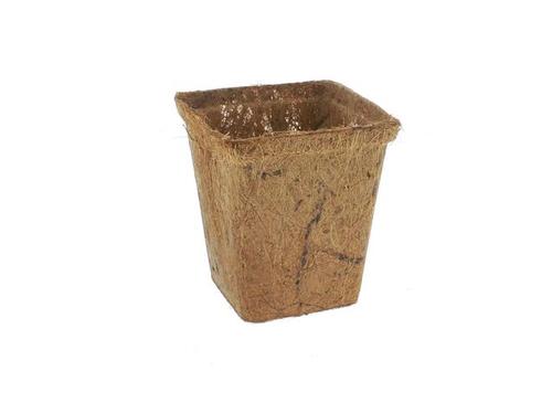 """Square Coir Pot 3"""""""