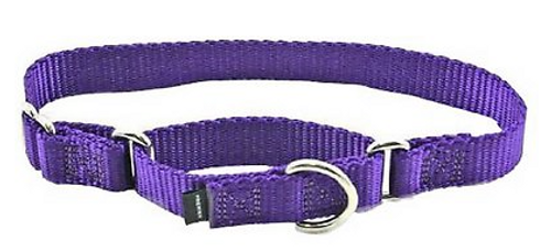 "Petsafe Dog Martingale Dog Collar 3/4"" Small 8-12"" Deep Purple"