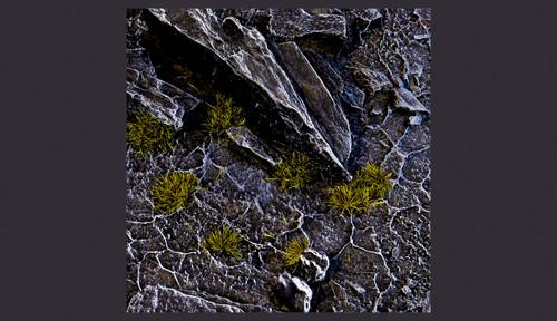 Gamers Grass - Tiny Dark Moss (2mm)