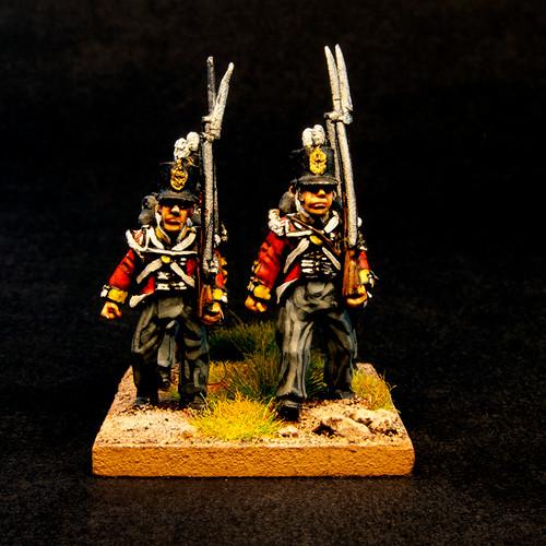 British Flank Company (8/pk)