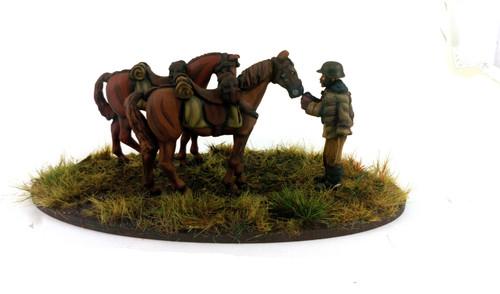 Hungarian Huszar Horse Holder