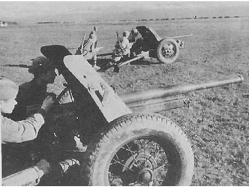 German PaK184r 4.5cm Anti-tank Gun & Crew - Summer Uniform