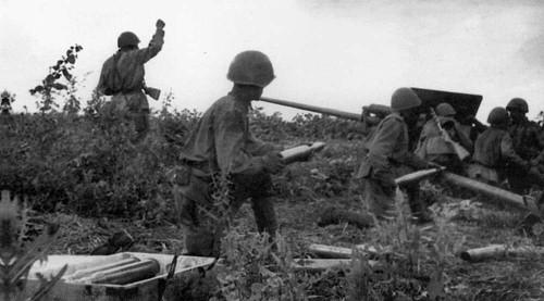 Soviet 57mm ZiS-2 Anti-tank Gun - Summer Uniform