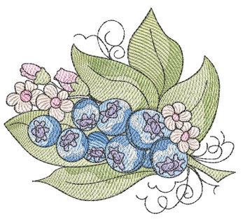 """Blueberries - Fits into a 4x4"""", 5x7"""" & 8x8"""" Hoop - Instant Downloadable Machine Embroidery"""